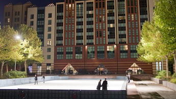 Come and pop on some ice skates and glide around Rockefeller Plaza opposite Disney�s Hotel New York*