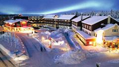Crazy Reindeer Hotel