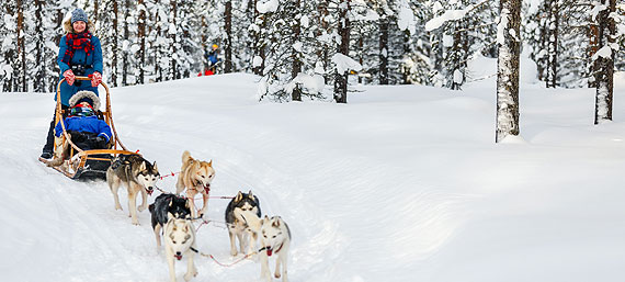Lapland Discovery