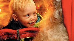 Lapland 1 Day Trips